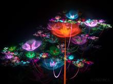Flowerings 75 by love1008