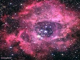 Rosette Nebulae