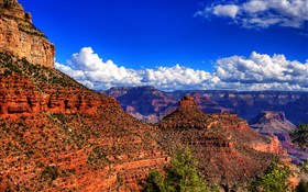 Grand Canyjon View