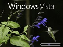 Windows Vista (Hummingbird)