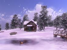 Sunny Winter Dreamland