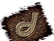 Macromedia Dreamweaver MX 2004 Engraved On Tree