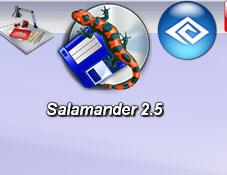 Servant Salamander