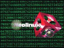 neolinux1