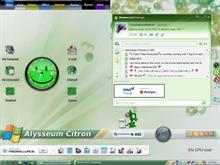 Alysseum Citron