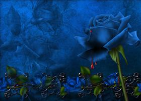 BlueBloodware BootSkin