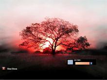 The Vista Sunset