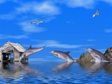 Dolphins II