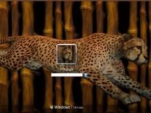Bamboo Cheetah_vista7