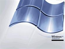 Windows XP Professional Steel