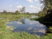 Nida river