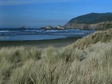 Seaside Bliss
