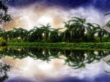 Keral Backwaters