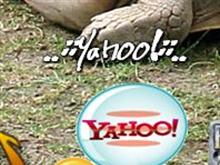Yahoo ! Messenger
