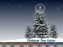 Christmas Tree Colors #winterdream
