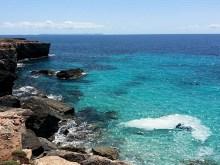 Aqua Seashore