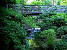 Garden Bridge Falls