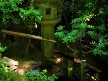 Bamboo Water Spout