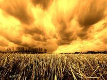 Sunset Fields V2