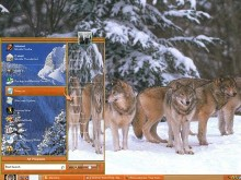 Forest Wolves