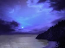 Blissful Purple
