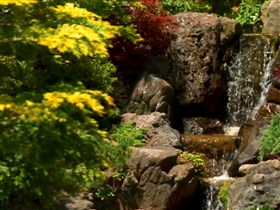 my waterfall garden