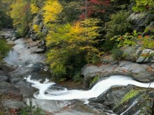 milky stream fall