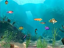Animated Fisk Tank