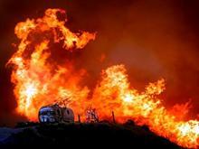 Wild Fires - 2