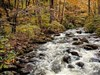 Chigago Creek Fall by: Frankief