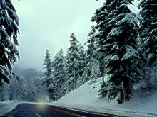 A Winters Drive